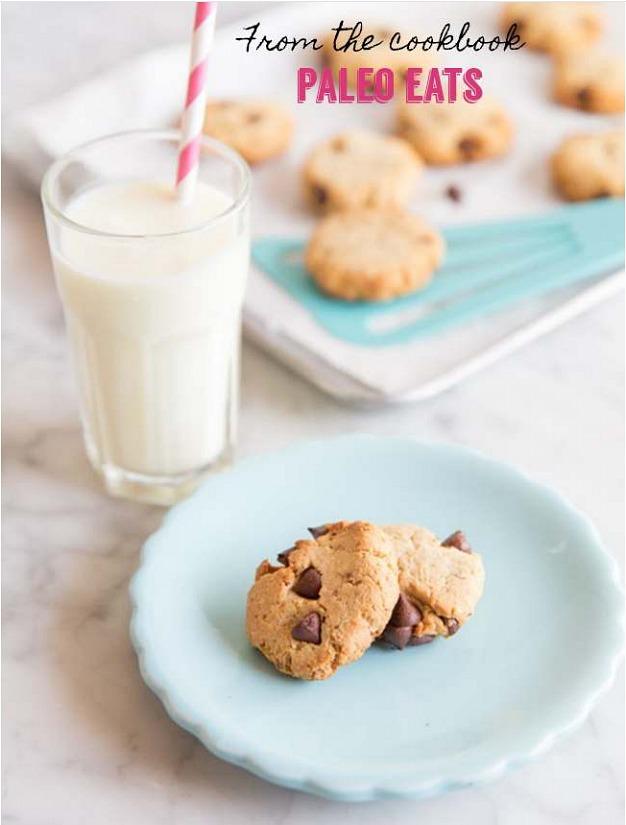 paleo chocolate chip cookie recipe, paleo snacks, paleo desserts